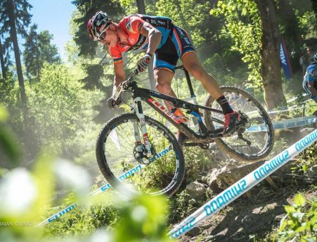 dinamo bikexpert
